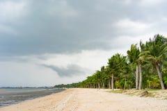 Wietrzny dzień przy plażą podczas niskiego przypływu Zdjęcie Royalty Free