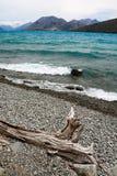 Wietrzny Jeziorny brzeg Zdjęcia Royalty Free