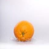 wietrzy pomarańcze Obraz Stock