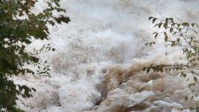 Wiev van het rusteloze mudy water met detail van tak op de linkerkant stock video