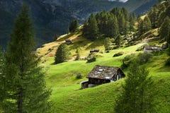 Wiew alpestre suizo del verano imagen de archivo