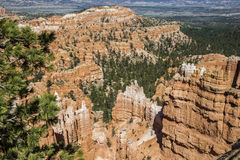 Wiew of Bryce Canyon, Royalty Free Stock Photo