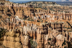 Wiew of Bryce Canyon Stock Image