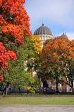 Wiew de la construction de cathédrale au delà des arbres d'automne Image libre de droits
