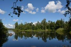 Wiewiórcza rzeka w północy Leningrad region obrazy stock