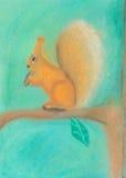 Wiewiórka na gałąź Zdjęcia Royalty Free