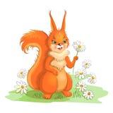 Wiewiórka na medow Ilustracji