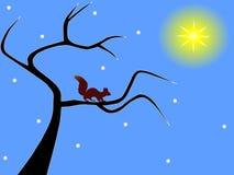 Wiewiórka na nagim zimy drzewie royalty ilustracja