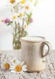 Świeży mleko w ceramicznym kubku Zdjęcie Stock