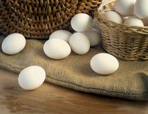 Świezi biali kurczaków jajka Zdjęcia Royalty Free