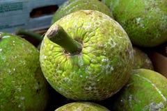 Świezi breadfruit w rynku w Birmingham centrum miasta Obrazy Stock
