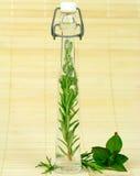 świezi butelek ziele Zdjęcie Stock
