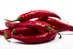 świezi chili pieprze Fotografia Stock