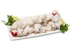 świezi cuttlefish grochy Zdjęcie Stock
