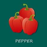 Świezi czerwoni pieprze, wektorowa ilustracja, sztandar, szablon Obraz Royalty Free
