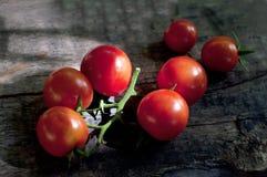 Świezi czerwoni pomidory na ciemnym drewnianym tle Obrazy Stock
