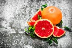 świezi grapefruits Obraz Royalty Free