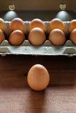 Świezi i organicznie jajka od organicznie jajka gospodarstwa rolnego, zdrowy karmowy produ Obraz Royalty Free