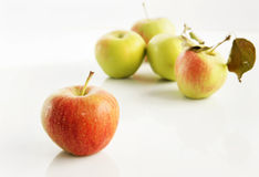 Świezi jabłka Obrazy Royalty Free