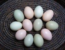 Świezi jajka od miejscowego gospodarstwa rolnego Zdjęcia Stock