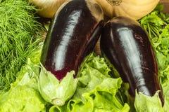 Świezi Jarscy warzywa Zdjęcia Stock