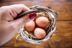 świezi koszykowi jajka zdjęcie royalty free