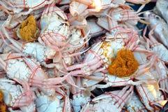 świezi krabów jajka obrazy royalty free
