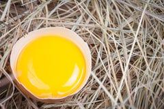 świezi kurczaków jajka Zdjęcia Royalty Free