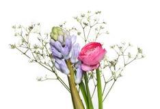 Świezi kwiaty Obraz Stock