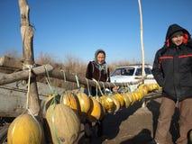 Świezi melony przy drogowym Nukus, Urgench -, Uzbekistan Obrazy Stock
