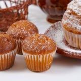 Świezi muffins Obraz Stock