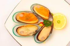 Świezi mussels zdjęcia royalty free