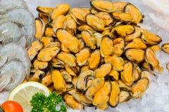 Świezi mussels na Lodowym owoce morza Zdjęcie Stock