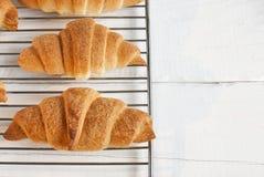 Świezi piec croissants na kruszcowym stojaku obraz stock
