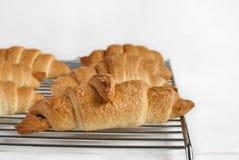 Świezi piec croissants na kruszcowym stojaku zdjęcia royalty free