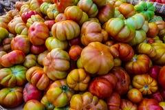 Świezi pomidory na rynku Fotografia Royalty Free