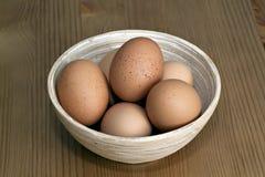 świezi pucharów jajka Obraz Royalty Free