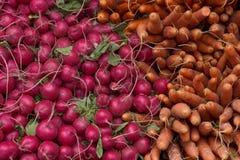 Świezi Veggies Zdjęcie Royalty Free