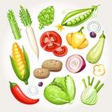 Świezi warzywa Inkasowi Fotografia Stock