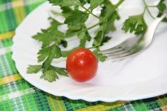 Świezi warzywa na talerzu Zdjęcia Stock