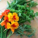 Świezi ziele i jadalni kwiaty Zdjęcie Royalty Free