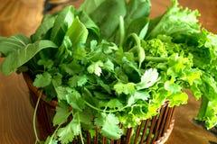 Świezi zieleni organicznie warzywa Zdjęcie Royalty Free