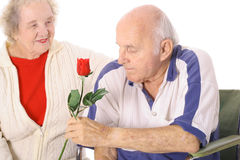 Wife giving handicap husband a rose. Isolated on white Stock Image