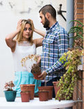 Wife in shock of husband and shrunken plants Stock Photos