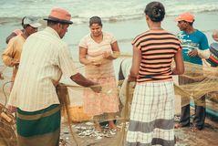 Wifes der Fischer, die den Fang von Fischen von den Netzen vom Indischen Ozean aufpassen Stockbild