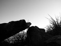 Wiffenspit Landschaft Lizenzfreie Stockbilder