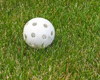 Wiffle Ball in the Grass Royalty Free Stock Photo