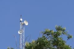 Wifi et arbre d'antenne de réception avec le ciel bleu Photographie stock