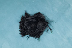 Wig on carpet. A wig thrown on the floor, on a turquoise carpet Stock Photo