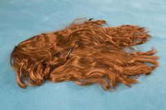 Wig on carpet. A wig thrown on the floor, on a turquoise carpet Royalty Free Stock Images